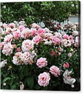 Flowers - Arlington National Cemetery - 01131 Acrylic Print
