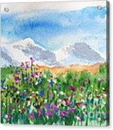 Flowers At Wolf Creek Acrylic Print