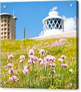 Flowers By Lighthouse Acrylic Print