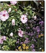 Flowers In A Garden Acrylic Print