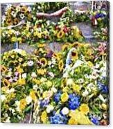 Flowers in Brugge Acrylic Print