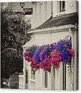 Flowers In Cashel Acrylic Print