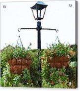 Flowers In Garden 4 Acrylic Print