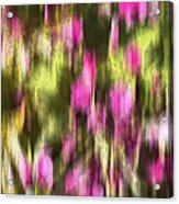 Flowers In Ink Acrylic Print