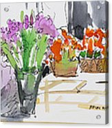 Flowers In Pots Acrylic Print by Becky Kim