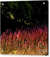 Flowers In The Breeze Acrylic Print