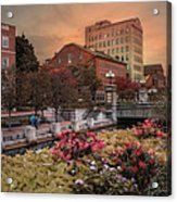 Flowers In The City Acrylic Print