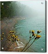 Flowers In The Fog Acrylic Print