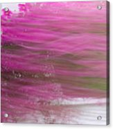 Flowers In The Wind Acrylic Print