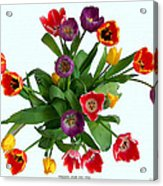 Flowers  Just  For  You Acrylic Print