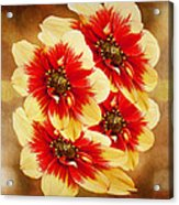 Flowers Of Flowers Acrylic Print
