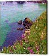 Flowers On The Coast Acrylic Print