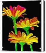 Flowers Quick Strokes Acrylic Print