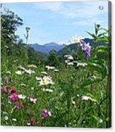 Flowers View Of The Mountains Acrylic Print