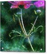 Flowers Whisper 02 Acrylic Print