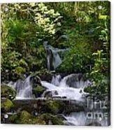 Flowing Creek In Spring  Acrylic Print