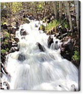 Flowing Fast Acrylic Print