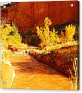 Flowing From Capital Reef Acrylic Print