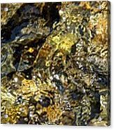 Flowing Gold Acrylic Print