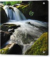 Flowing Stream Acrylic Print