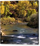 Flowing Through Zion National Park Acrylic Print