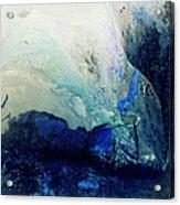 Fluid Enchantment Acrylic Print by Janice Sakry