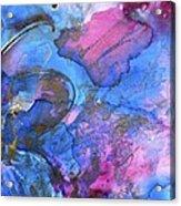 Flutter By 2 Acrylic Print by Debi Starr