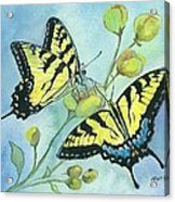 Flutterbys Acrylic Print