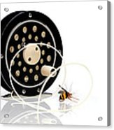 Fly Fishing Reel With Fly Acrylic Print by Tom Mc Nemar