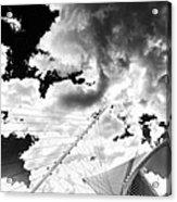 Fly Free Acrylic Print