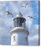 Fly Past - Seagulls Round Southwold Lighthouse - Square Acrylic Print
