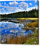 Fly Pond In The Adirondacks II Acrylic Print