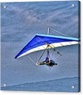 Fly With Me Acrylic Print