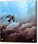 Flying Before The Storm Acrylic Print by Bob Orsillo
