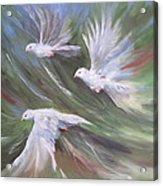 Flying Birds Acrylic Print by Paula Marsh