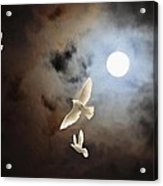 Flying By Moonlight Acrylic Print
