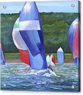 Flying Colors Acrylic Print