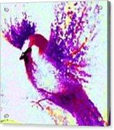 Flying Free Acrylic Print