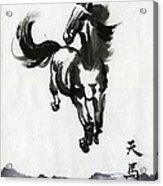 Flying Horse Acrylic Print