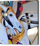 Flying Horses On The Carousel Acrylic Print