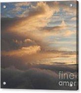 Flying Into Morning Acrylic Print by Margaret McDermott