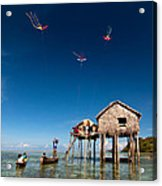 Flying Kites Acrylic Print