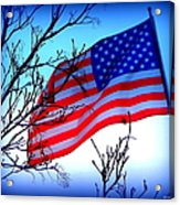 Flying Ol Glory Acrylic Print