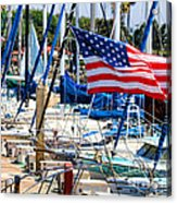 Flying Proud By Diana Sainz Acrylic Print