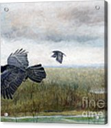 Flying To The Roost Acrylic Print by Barb Kirpluk