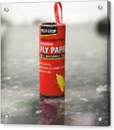 Flypaper Container Acrylic Print