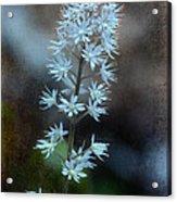 Foam Flower Acrylic Print