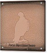 Focus Like A Lazer Beam Acrylic Print