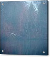Fog And Fall Acrylic Print