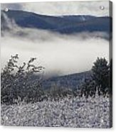 Fog And Frost Acrylic Print